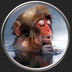 Картинка на тему Анализ сказки Медуза и обезьяна