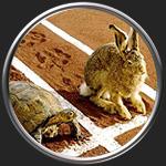 Картинка на тему Анализ сказки Заяц и черепаха
